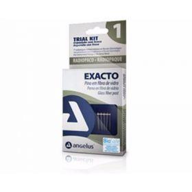 Angelus Exacto Glass Fiber Post Trial Pack