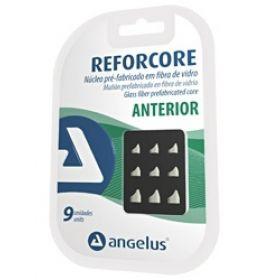 Angelus Reforcore Anterior Fiber Post Intro Kit