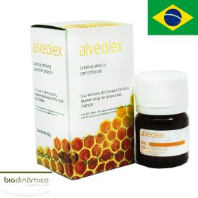 Biodinamica Alveolex Dry Socket Paste